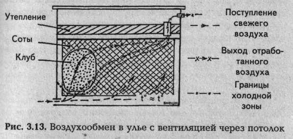 Пчеловодство как сделать вентиляцию